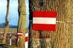 Drzewa można oznaczac tablicami odblaskowymi
