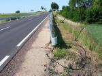 Dzwierzuty 2008 - ślady po wycietych drzewach, które mogly pozostac za barierkami