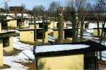 Wilkasy 2006 - ogławianie