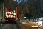 Załadunek drewna do tartaku