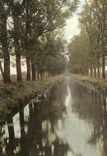 Aleja wzdłuż kanału rzeki Orzyszy. Ze zbiorów W. Kujawskiego