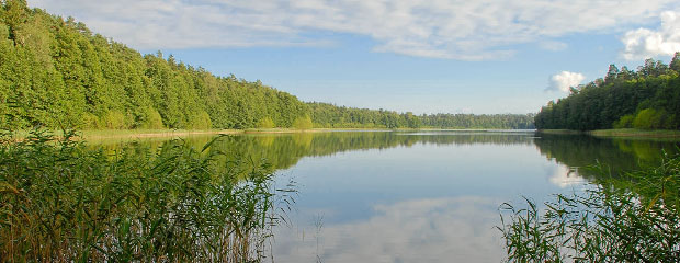 Jezioro Jegocinek Fot. B.Dal