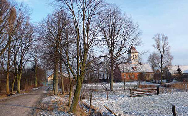 Drogi prowadzące od wsi do wsi brukowano i obsadzano drzewami. Momajny, pow. kętrzyński. Fot. K.Worobiec