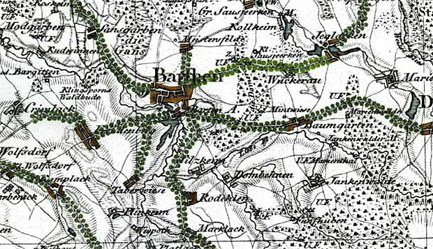 Sieć alei przydrożnych wokół Barcian, istniejących pod koniec XVIII w., zaznaczonych na mapie F.L. von Schröttera. Jasnozielonym kolorem wyróżniona została zachowana do dzisiaj aleja dębowa pomiędzy Barcianami a Jegławkami (obecnie fragment drogi wojewódzkiej nr 650). Opracowanie rysunku M. Zwierowicz.
