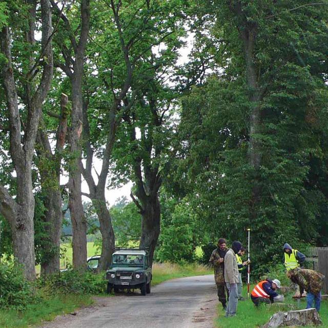 W trakcie badań zebrano dane o alejach – gatunkach drzew, stanie zdrowotnym, obecności pachnicy i innych (Fot. K. A. Worobiec)
