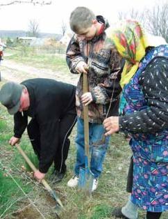 Dęby w Wąbnicach sadzą starsi i młodsi (Fot. Piotr Tyszko-Chmielowiec)