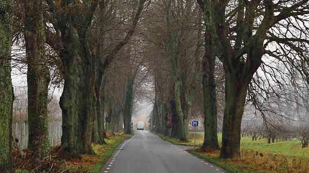 """Szwecja – znak drogowy z literą """"M"""" oznacza """"Mötesplats"""", czyli mijankę, gdzie można wyprzedać innych. (Fot. T. Oszmian"""