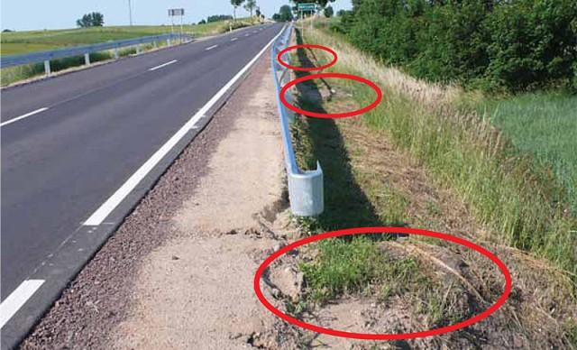 Ślady po wyciętych drzewach, które mogły pozostać za barierkami, Dźwierzuty 2008 (Fot. K. A. Worobiec)