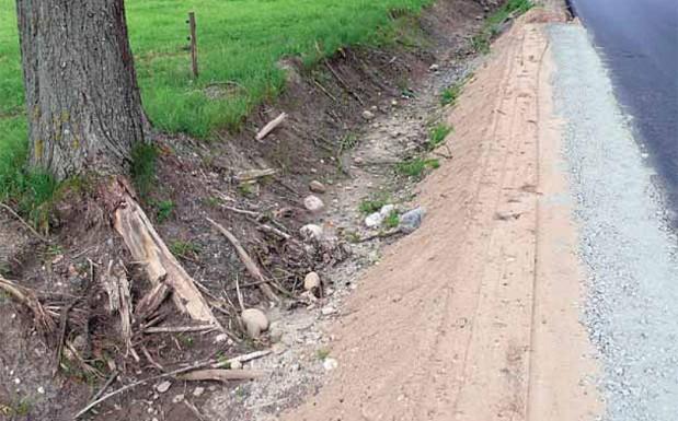 W trakcie prac ziemnych często uszkadzane są korzenie, co może prowadzić do osłabienia drzew, pow. mrągowski 2007 r. (Fot. K. A. Worobiec)